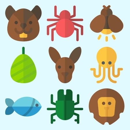 Icons set about Animals with fish, spider, octopus, squirrel, kangaroo and lion
