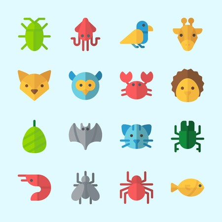 Icons about animals with giraffe, fox, spider, cat, crab and cocoon.