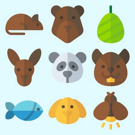 Icons set about Animals with squirrel, firefly, panda, kangaroo, rat and cocoon