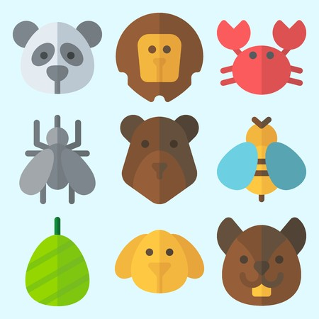 Icons set about animals with bear, cocoon, squirrel, panda, crab and lion.