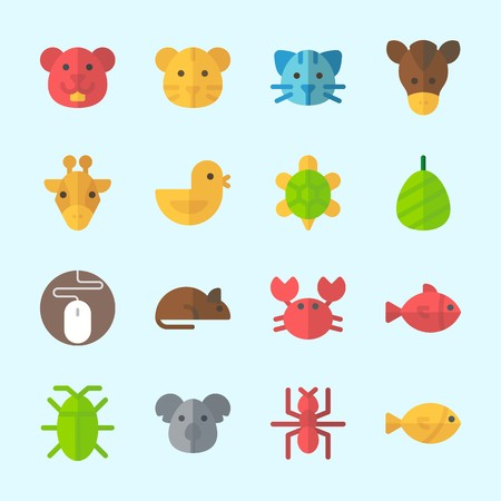 Icons about animals with koala, cocoon, horse, turtle, mouse and ant.