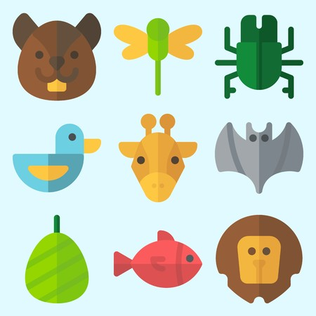 Icons set about Animals with beetle, bat, lion, squirrel, giraffe and fish Çizim