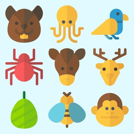 Icons set about Animals with squirrel, wasp, deer, cocoon, octobus and spider