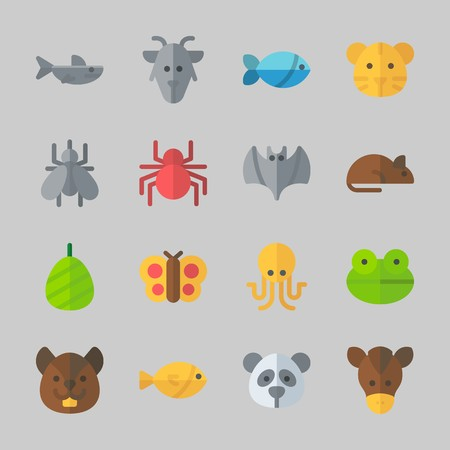 Icons about animals with fish, panda, spider, octopus, squirrel and frog. Çizim