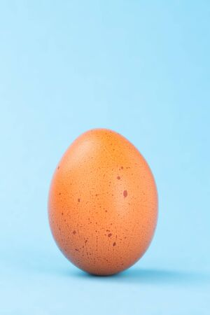 Single brown egg on complementary colored blue background, clipping-path included