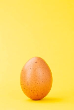 brown egg upright on colored yellow background full frame