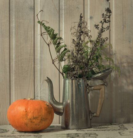 Still life with dry plants in a coffee pot and pumpkin