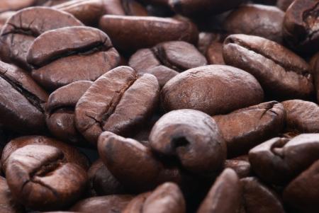 Macro shot coffee grains