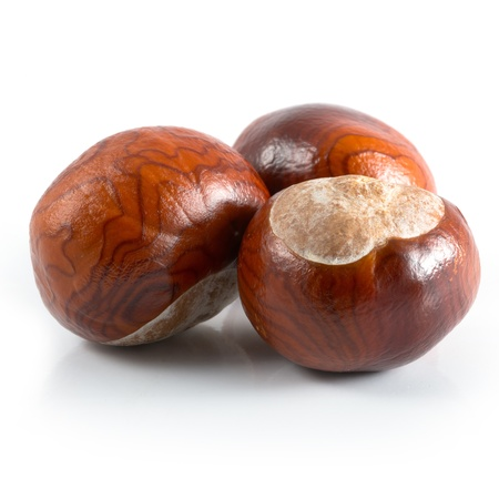 Isolated chestnuts on a white background