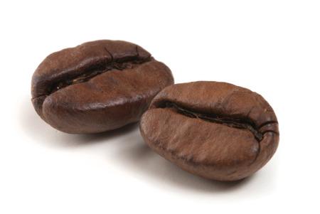 semilla de cafe: dos granos de café sobre fondo blanco