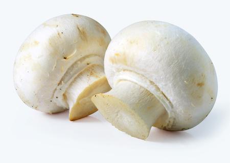 white mushrooms on white