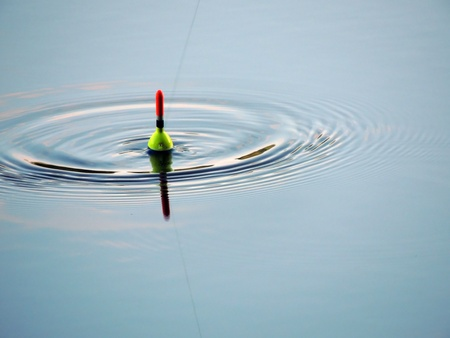 fishing bobber: float in the water photographed during the biting fish Stock Photo