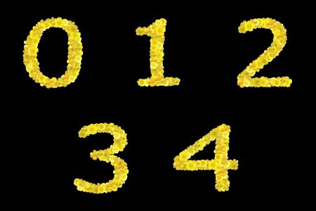 alphabet, script, ABC Stock Photo