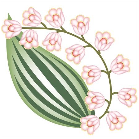 sprig of flowers like lilies of the valley Illustration