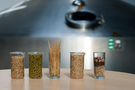 Ingredients for the production of beer: malt, yeast, hops, grain Stock Photo