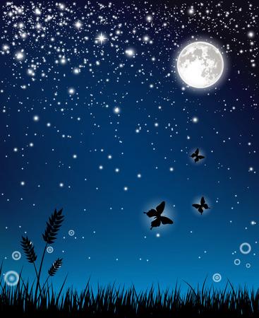 Fairy night  イラスト・ベクター素材