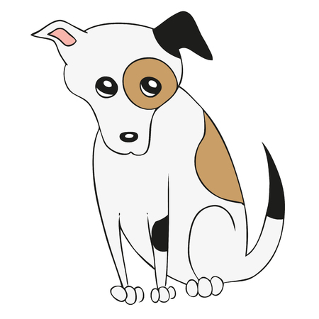 jack russell: Cute dog