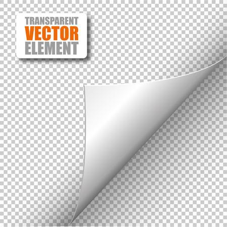 white back: Vector corner