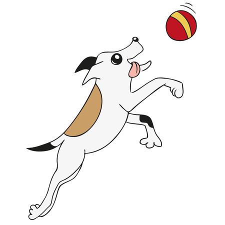 balon de basketball: Perro jugando