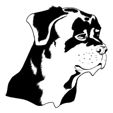 fart: Illustration of a dog