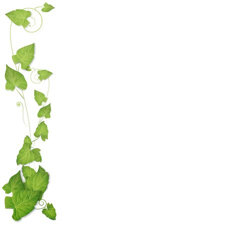 Leaves background Ilustração