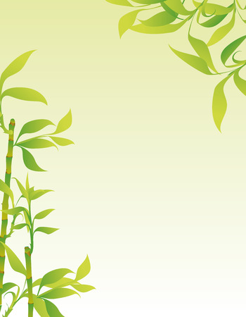 bamboo therapy: Bamboo background