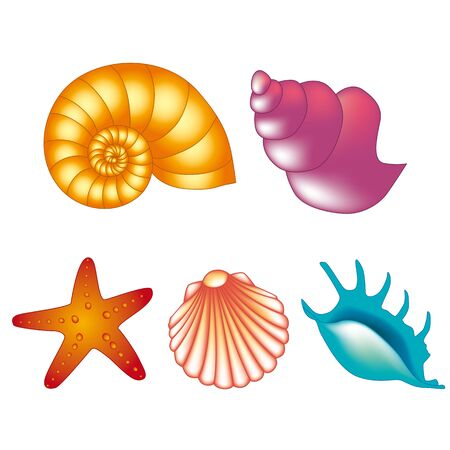 waterpolo: Color shells Illustration