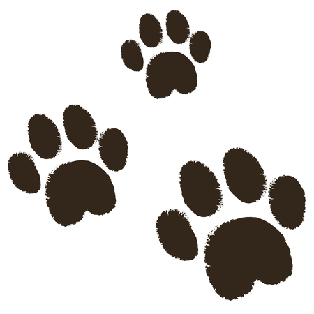 Vector - Cat paws