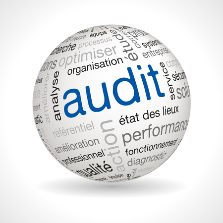 auditor: French audit sphere