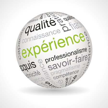 professionalism: French experience theme sphere with keywords full vector Illustration