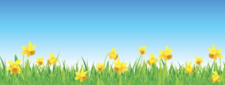 Pretty daffodils for spring full vector banner