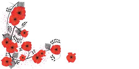 Watercolor red poppies illustration with black leaves background
