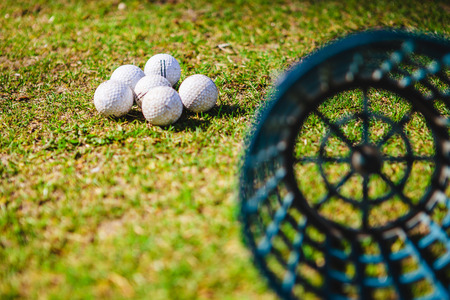 Golf club and balls in green grass