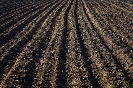 Schwarzer Boden gepflügtes Feld. Erde Textur Rustikaler Hintergrund Standard-Bild - 80869798