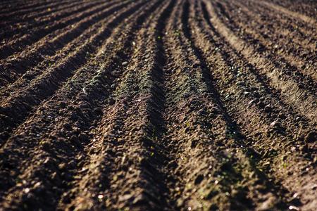 Schwarzer Boden gepflügtes Feld. Erde Textur Rustikaler Hintergrund Standard-Bild - 81278906