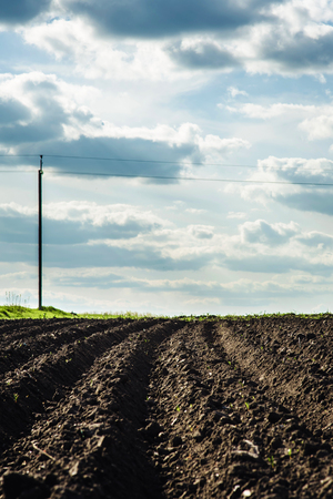 Black soil plowed field and blue clouds