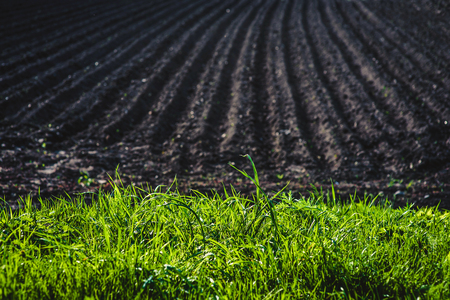 Black soil plowed field. Earth texture. Rustic background Stock fotó - 80993843
