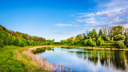 Sommersee nahe dem Wald mit Bäumen. Standard-Bild - 81457479