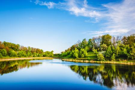 나무와 숲 근처 여름 호수입니다.