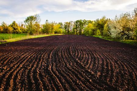 Schwarzer Boden gepflogenes Feld. Erdbeschaffenheit. Rustikaler Hintergrund Standard-Bild - 81639161