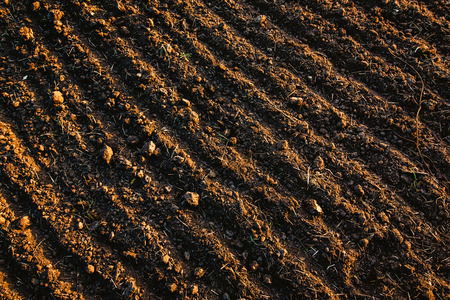 검은 토양 ploughed 필드입니다. 지구 텍스처입니다. 소박한 배경