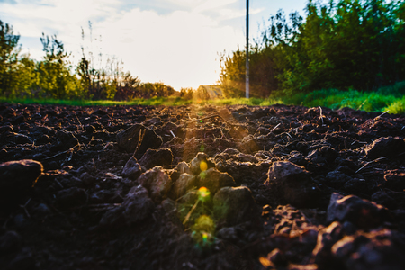 Black soil plowed field through the suns rays. Earth texture. Rustic background