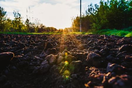 Schwarzer Boden pflügte Feld durch die Strahlen der Sonne. Erdtextur. Rustikaler Hintergrund Standard-Bild - 81648770