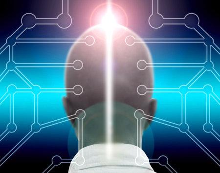 calvitie: R�sum� t�te et circuits