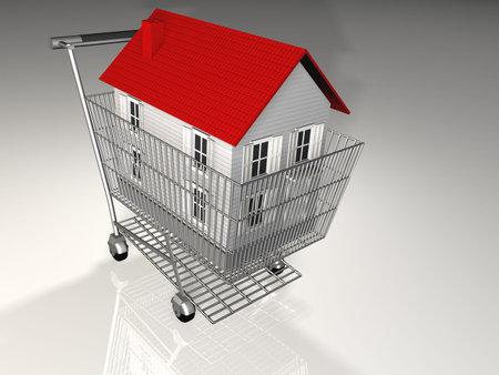 House on bascket - 3d render