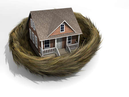 Conceptual house in a bird nest - rendered in 3d
