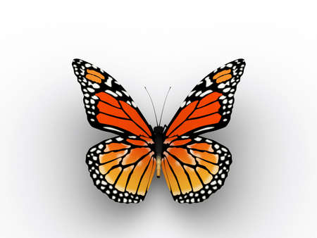 dainty: A red butterfly on white background - 3d render