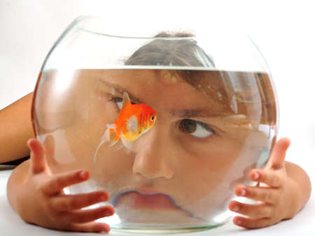 A little girl looking at goldfish in fishbowl Stock Photo