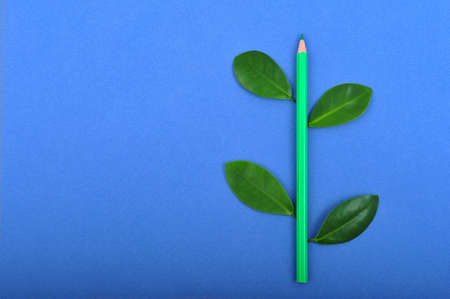 leafage: Green pencil wit leafage on blue background Stock Photo