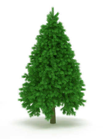 undecorated: Undecorated christmas tree over white - 3d render illustration Stock Photo
